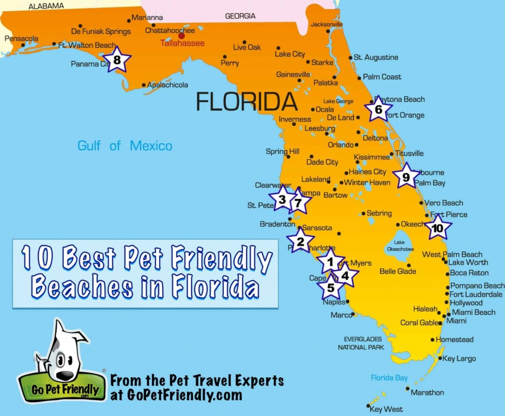 10 Of The Best Pet Friendly Beaches In Florida | Gopetfriendly - Map Of Florida Vacation Spots