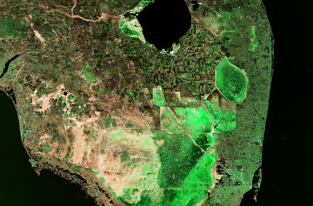 1856 War Map Florida | Jacqui Thurlow-Lippisch - Toxic Algae In Florida Map
