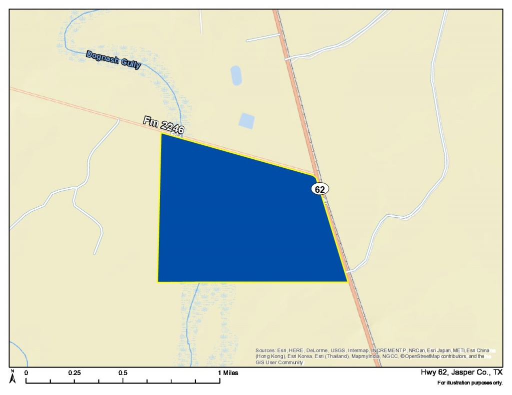 388 Acres | Jasper County | Homeland Properties - Jasper County Texas Parcel Map