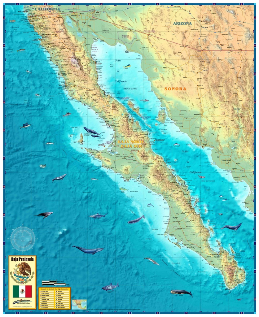 Baja Wall Map - The Map Shop - Baja California Topographic Maps