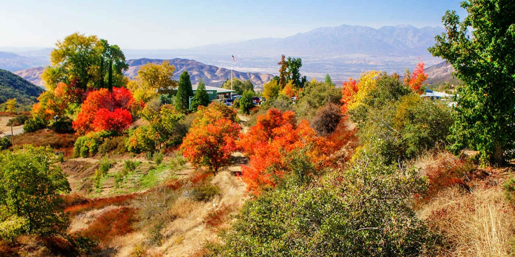 Best Places For California Autumn Leaves   Visit California - California Fall Color Map 2017