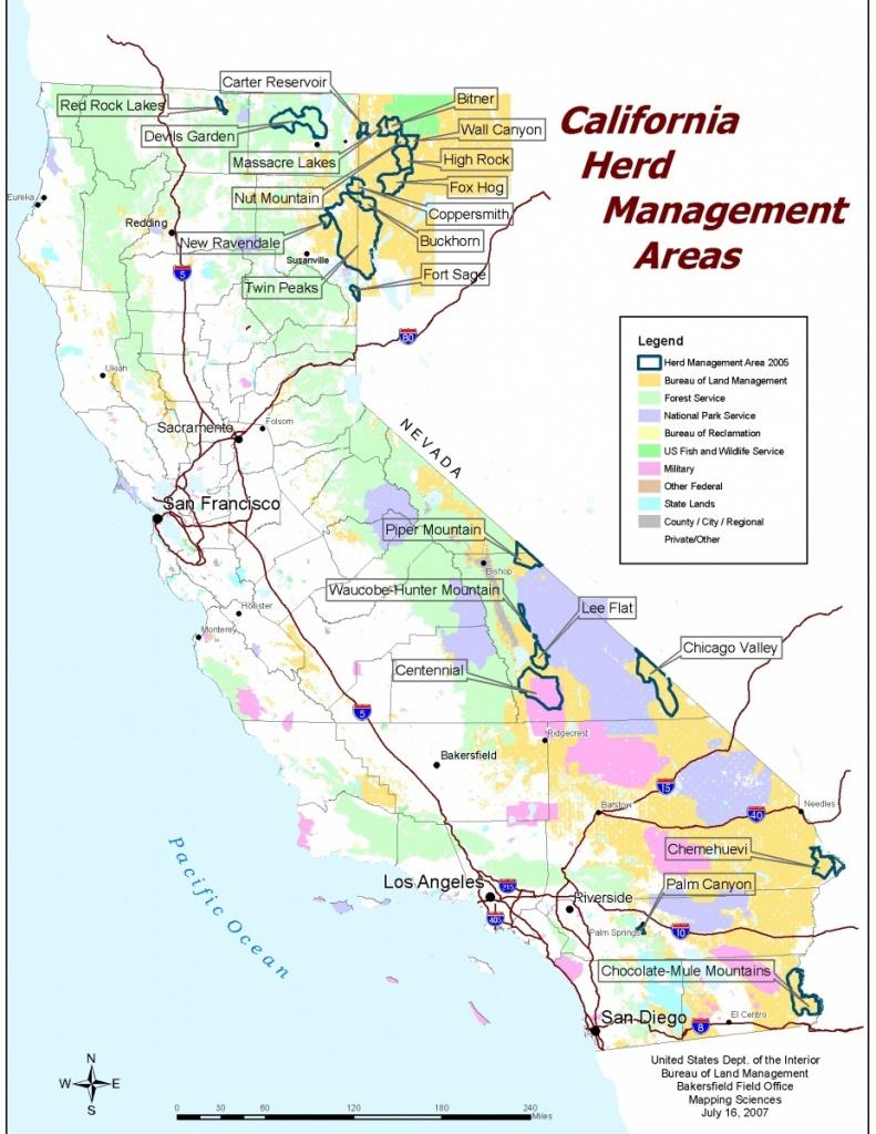 California - Herd Management Areas | Bureau Of Land Management - California Public Lands Map