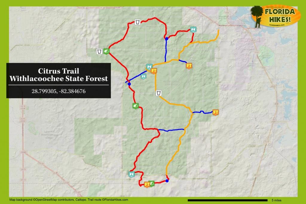 Citrus Hiking Trail | Florida Hikes! - Florida Trail Maps Download