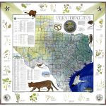 Conserving History With Map Sales   Expressnews   Texas General Land Office Maps