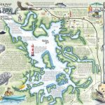 Crystal River's Spring Maps | The Souvenir Map & Guide Of Kings Bay   Map Of All Springs In Florida