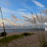Discover The New Paul Parker Team At Harbor Point Realty   Alligator Point Florida Map