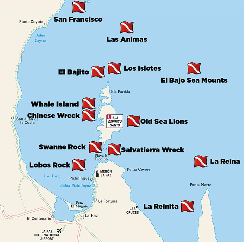Dive-Sites-La-Paz - Divers Inn Mx   B&b For Diversdivers   La - La Paz Baja California Map