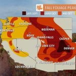 Fall Scenery Drive Autumn Colors Foliage Leaf Leaves Road Map And   California Fall Color Map
