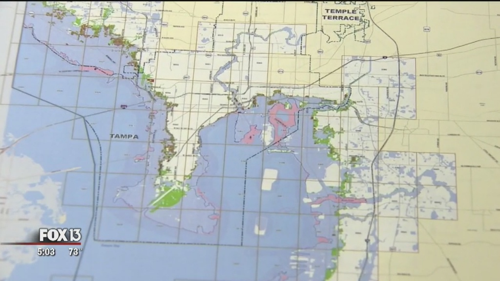 Fema Proposes New Flood Maps For Hillsborough, Pinellas Counties - Fema Flood Zone Map Sarasota County Florida