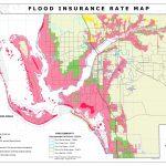 Flood Insurance Rate Maps   Florida Flood Zone Map