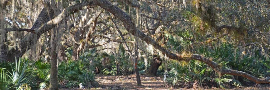Florida Hiking Map | Hiking Trails | Florida Hikes! - Florida Hiking Trails Map