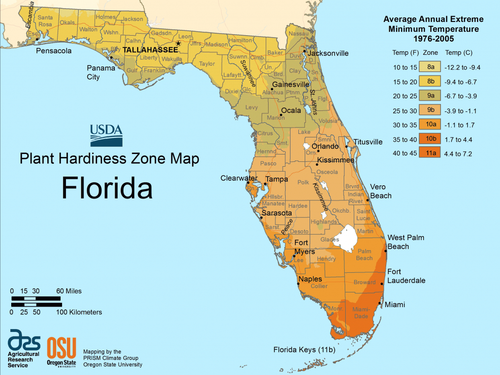 Florida Map Search Results • Mapsof - Plant City Florida Map