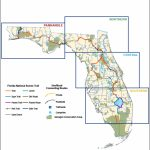 Florida National Scenic Trail   About The Trail   Florida Bicycle Trails Map