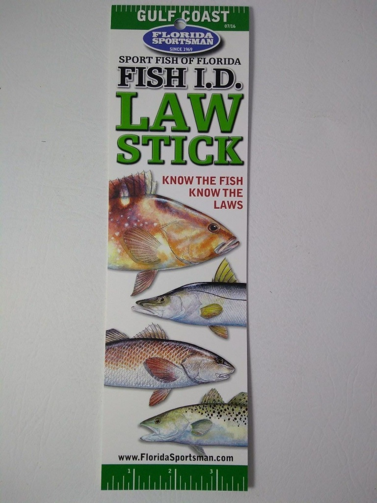 Florida Sportsman Ls4Cgc 4-Color Fish Id Tri-Fold Guide Gulf For - Florida Sportsman Fishing Maps