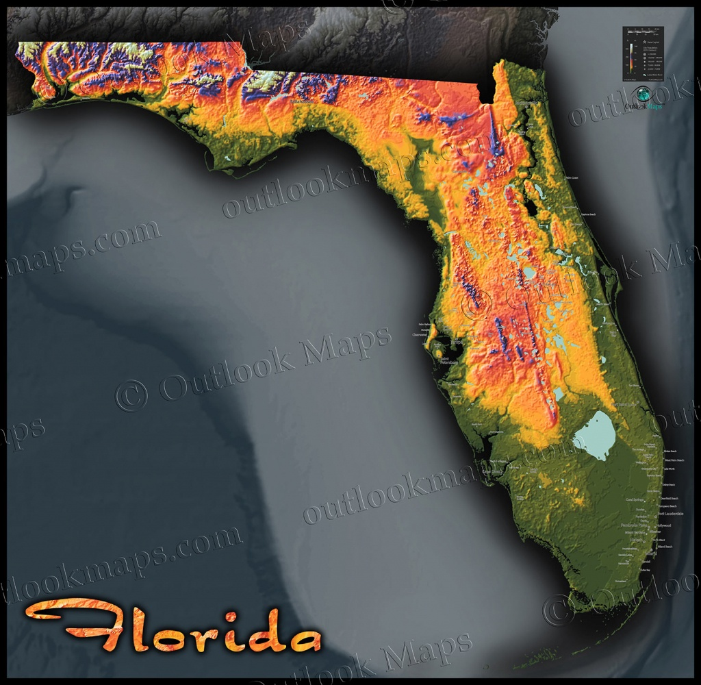 Florida Topographic Map - Florida Elevation Map
