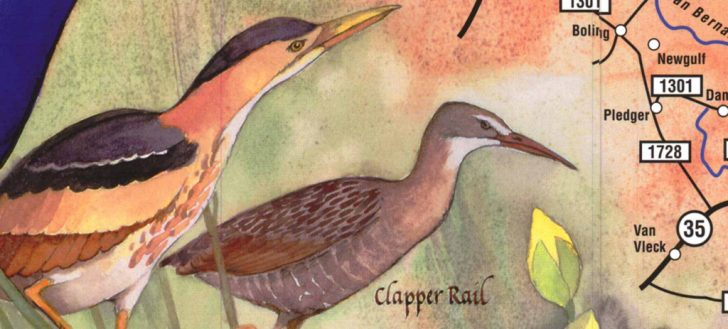 Texas Birding Trail Maps