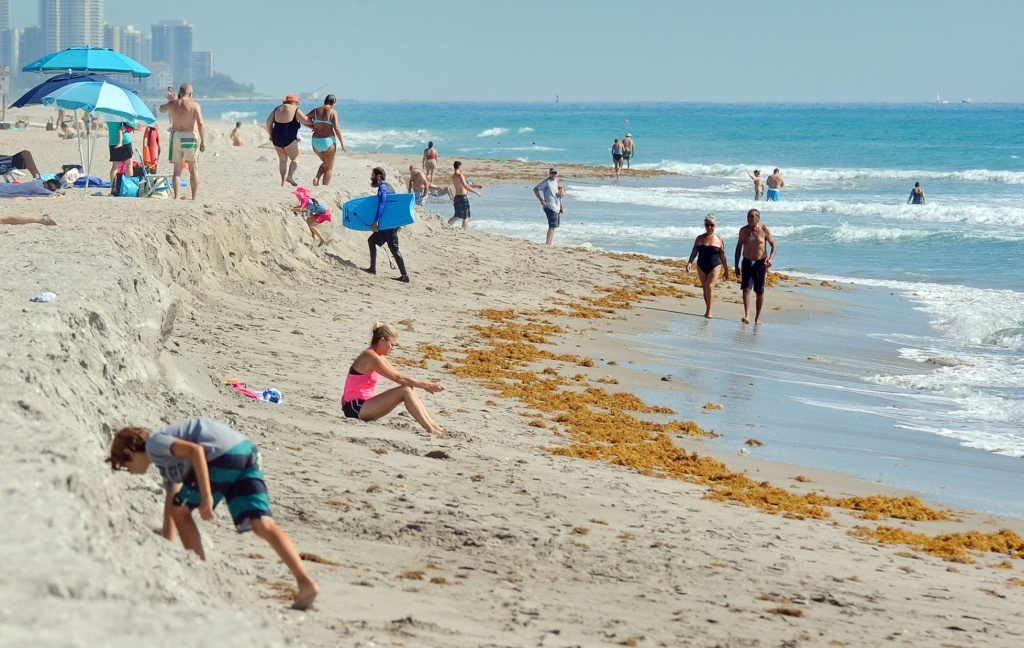 Health Officials In Florida Are Warning Residents And Tourists Alike - Florida Beach Bacteria Map 2018