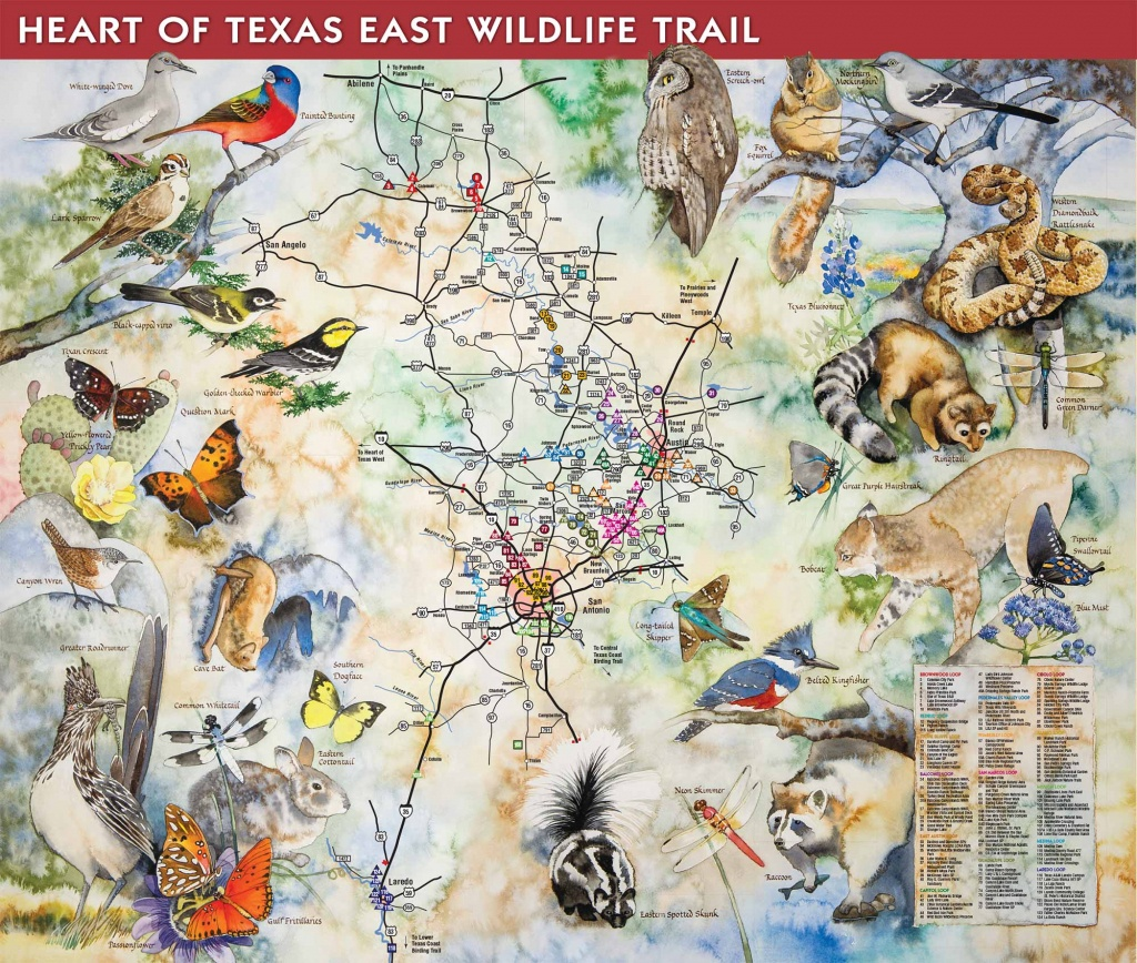 How To Purchase - Great Texas Wildlife Trails - Wildlife - Texas - Texas Birding Trail Maps