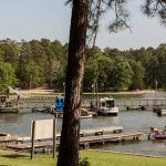 Lake Livingston State Park — Texas Parks & Wildlife Department   Map Of Lake Livingston Texas
