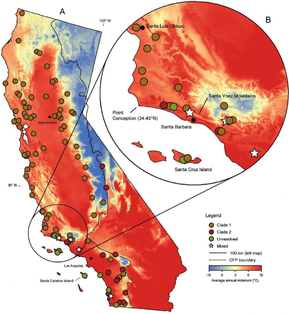 Map Of Average Annual Minimum Temperature (Aamin) For California - California Temperature Map Today