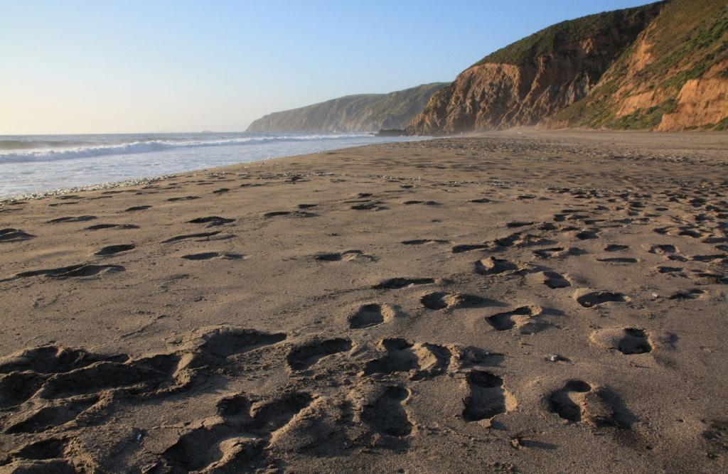 Map Of California Beaches - Central California Beaches Map