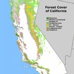 Map Of California Forests | Twitterleesclub   California Forests Map