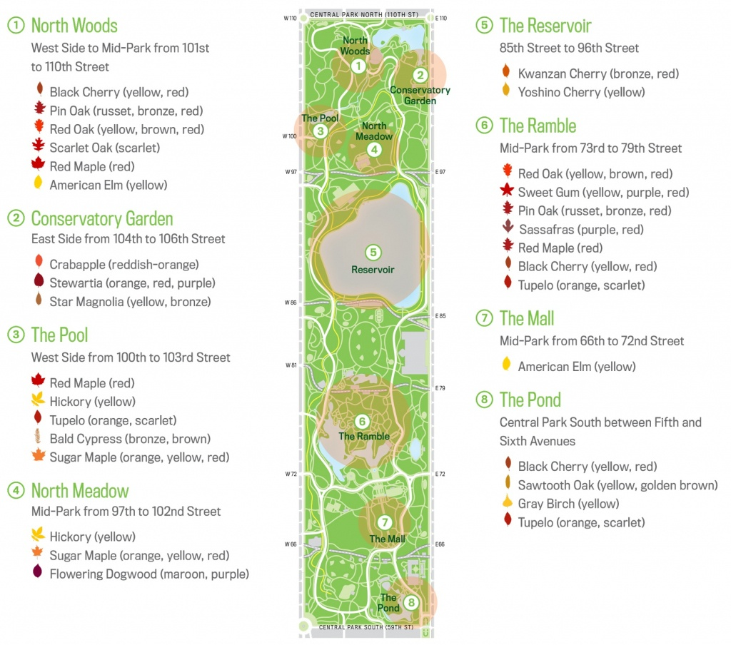 Map Of Central Park New Your City Central Park Zoo Attraction Free - Printable Map Of Central Park New York