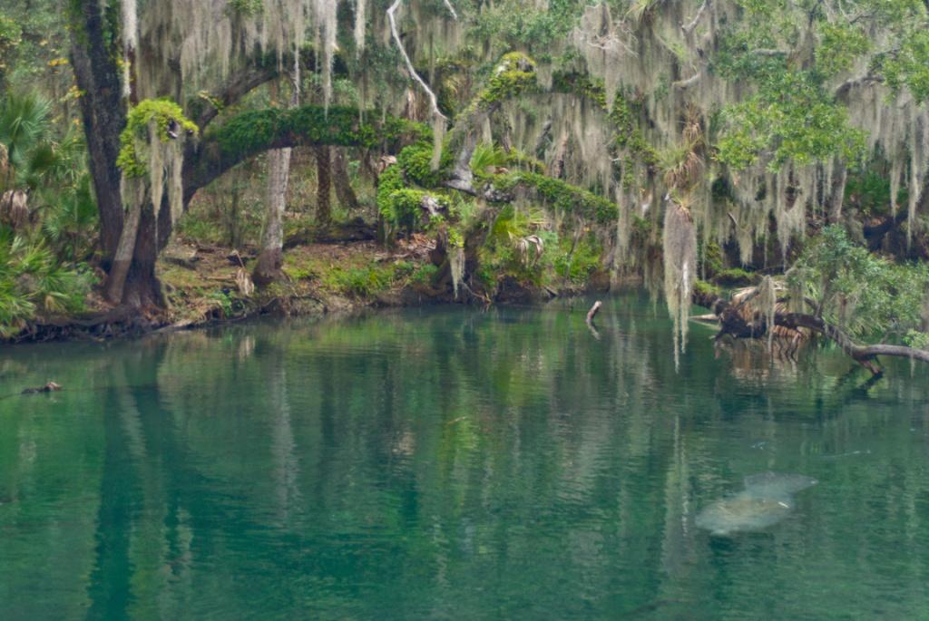 Map Of Florida Springs | Florida Hikes! - Central Florida Springs Map