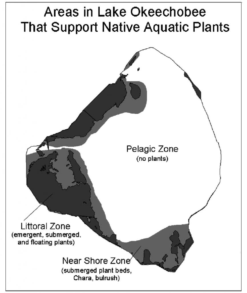 Map Of Lake Okeechobee, Florida, U.s., Showing Regions That Support - Fishing Map Of Lake Okeechobee Florida