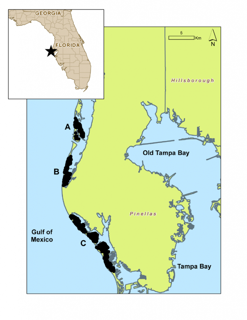 Map Of Study Area (Pinellas County Barrier Islands)   Download - Map Of Pinellas County Florida