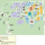Mayo Clinic Florida Campus   Maplets   Mayo Clinic Florida Map