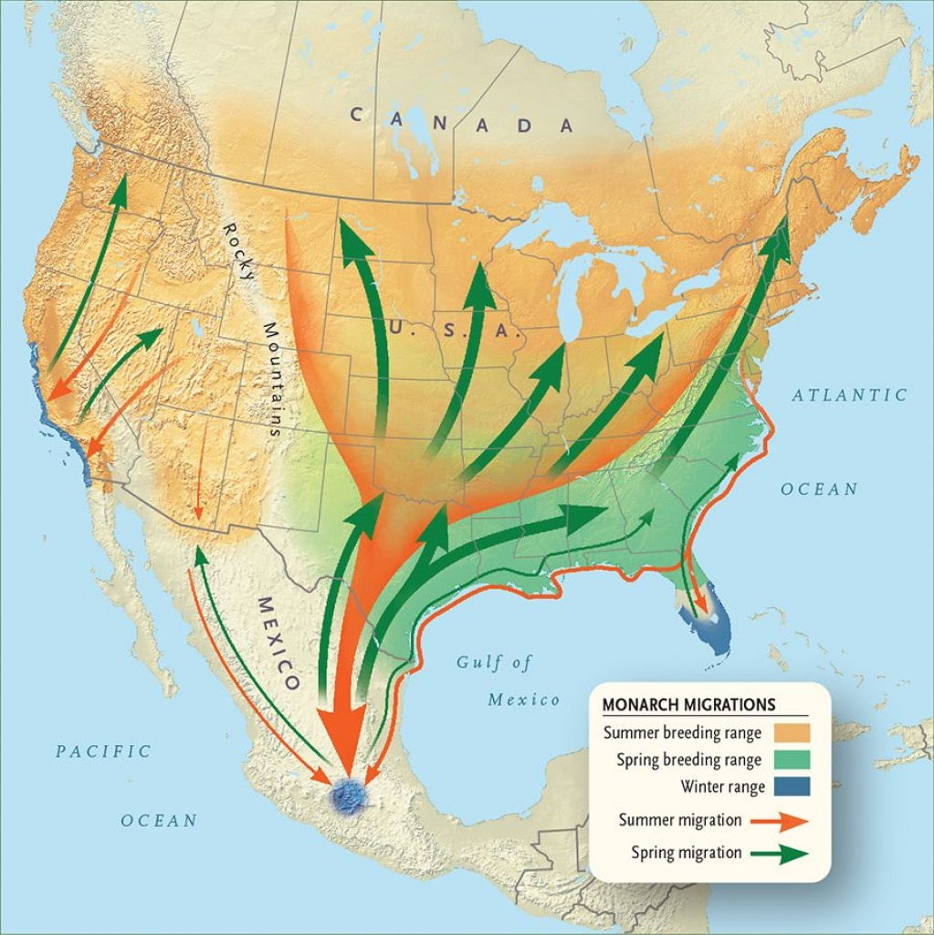 Monarch Migration Map | Monarch Butterfly Migration | Monarch - Monarch Butterfly Migration Map California