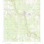 Mytopo Branford, Florida Usgs Quad Topo Map   Branford Florida Map