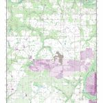 Mytopo Lithia, Florida Usgs Quad Topo Map   Lithia Florida Map