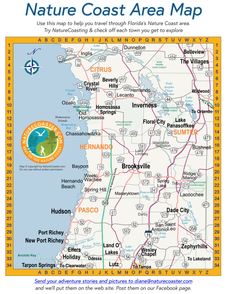 Nature Coast Area Map : Naturecoaster - Hernando Florida Map