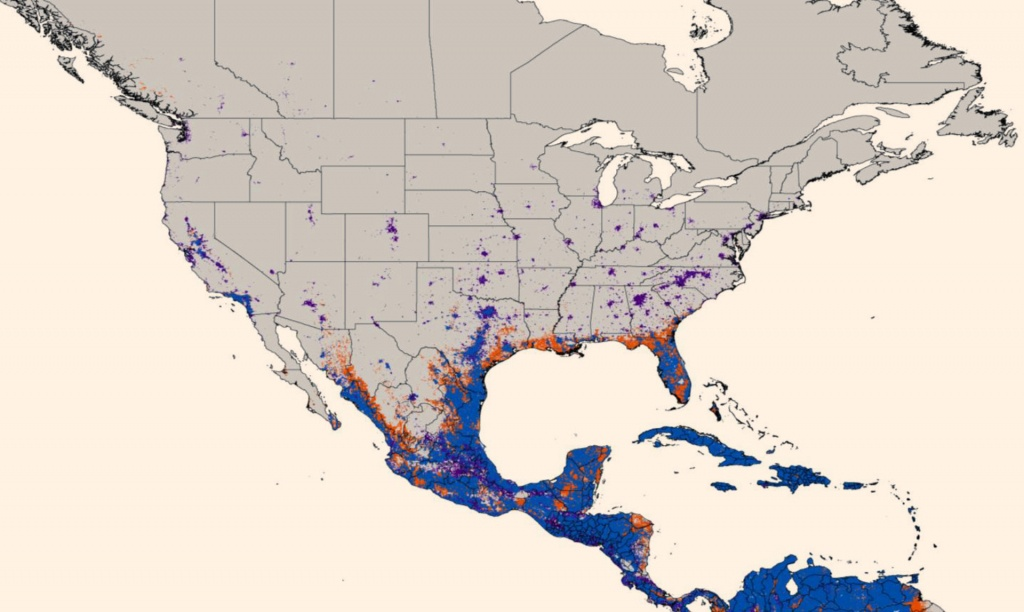 New Map Predicts Spread Of Zika Virus | Medicine | Sci-News - Zika Virus Florida Map