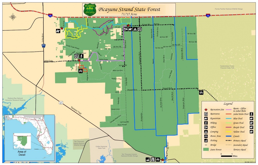 Picayune Strand State Forest / State Forests / Our Forests / Florida - Golden Gate Estates Naples Florida Map