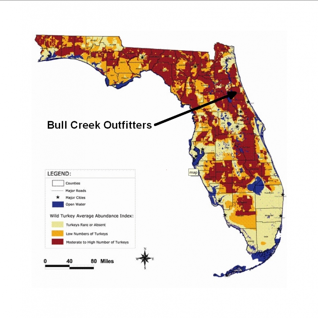 Population Map   Bull Creek Outfitters - Florida Wild Hog Population Map