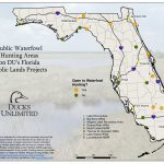 Public Hunting On Du Projects In Florida   Florida Public Hunting Map