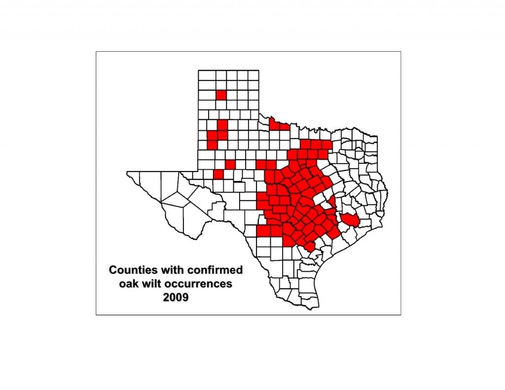 Red Oak Texas Map - World Maps - Red Oak Texas Map