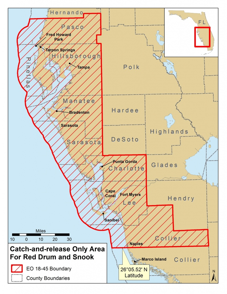 Red Tide Beach Cleanup - Map Of Crescent Beach Florida