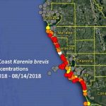 Red Tide Update: Respiratory Irritation Reported In Pinellas   Map Of Sw Florida Beaches