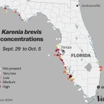 Red Tide: Why Florida's Toxic Algae Bloom Is Killing Fish, Manatees   Current Red Tide Map Florida
