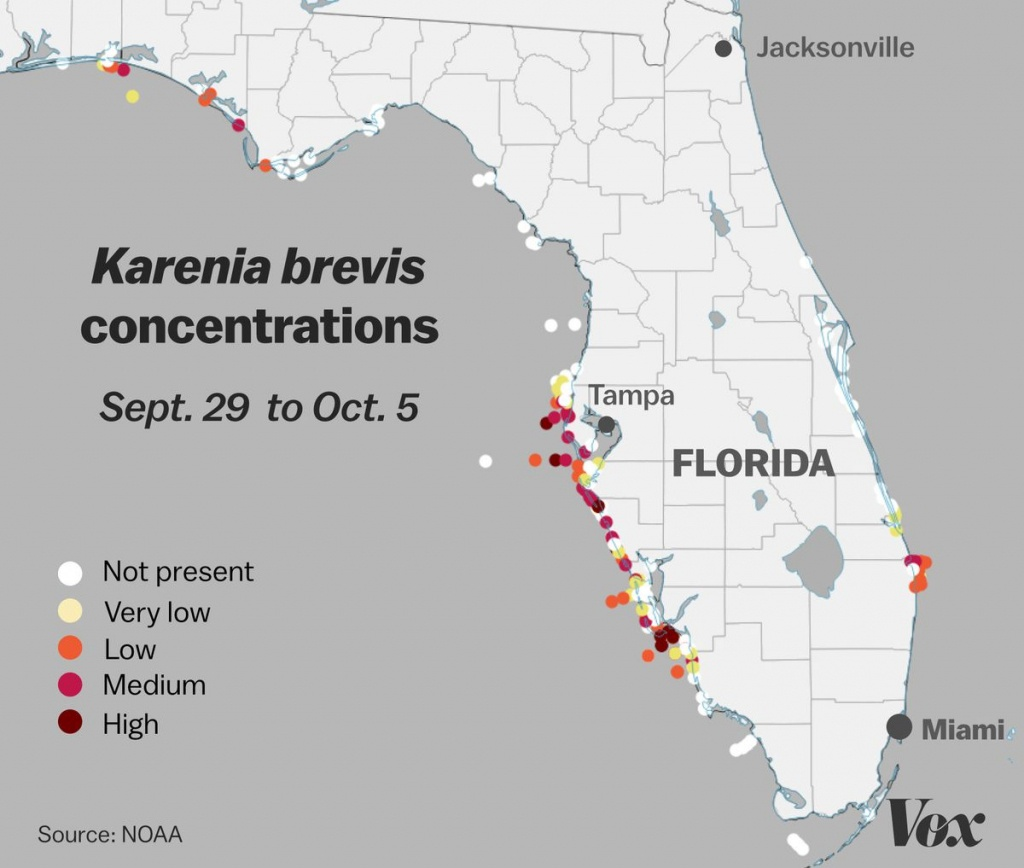 Red Tide: Why Florida's Toxic Algae Bloom Is Killing Fish, Manatees - Florida Blue Green Algae Map