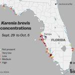 Red Tide: Why Florida's Toxic Algae Bloom Is Killing Fish, Manatees   Toxic Algae In Florida Map