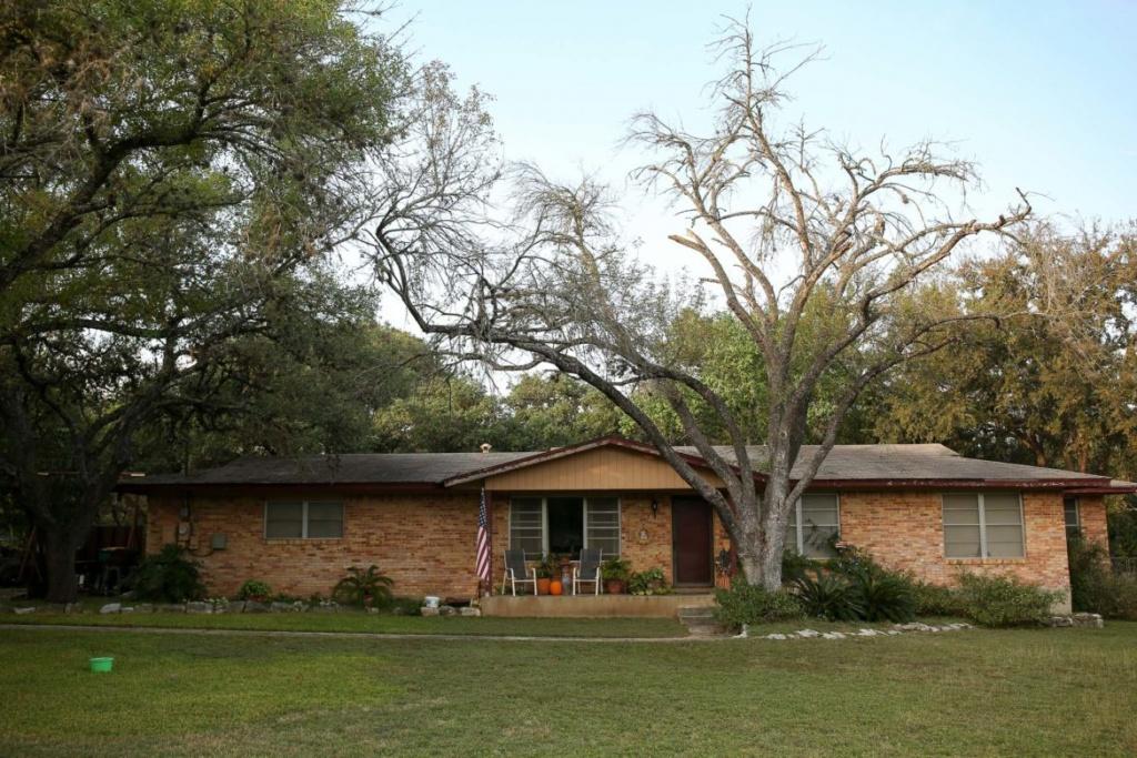 San Antonio, Surrounding Cities Work To Mitigate Oak Wilt Problem - Oak Wilt Texas Map