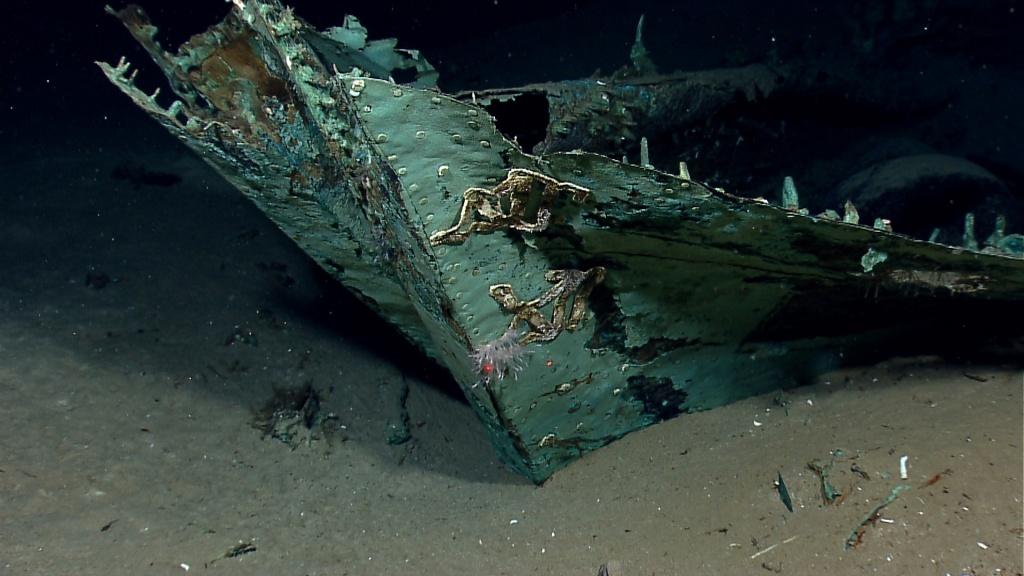 Shipwreck Discovered 4,363 Feet Down In Gulf Of Mexico Called - Texas Gulf Coast Shipwrecks Map