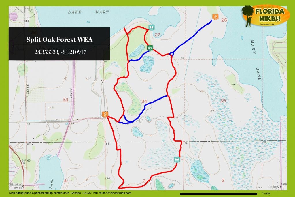 Split Oak Forest Wea | Florida Hikes! - Central Florida Bike Trails Map