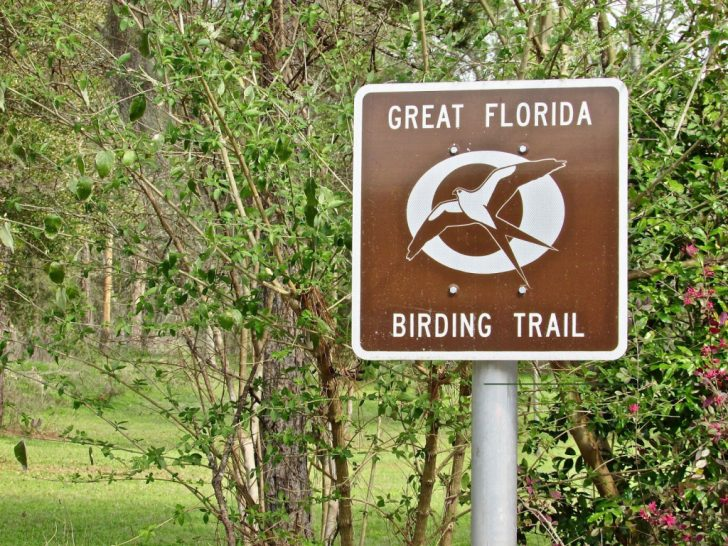 Great Florida Birding Trail Map
