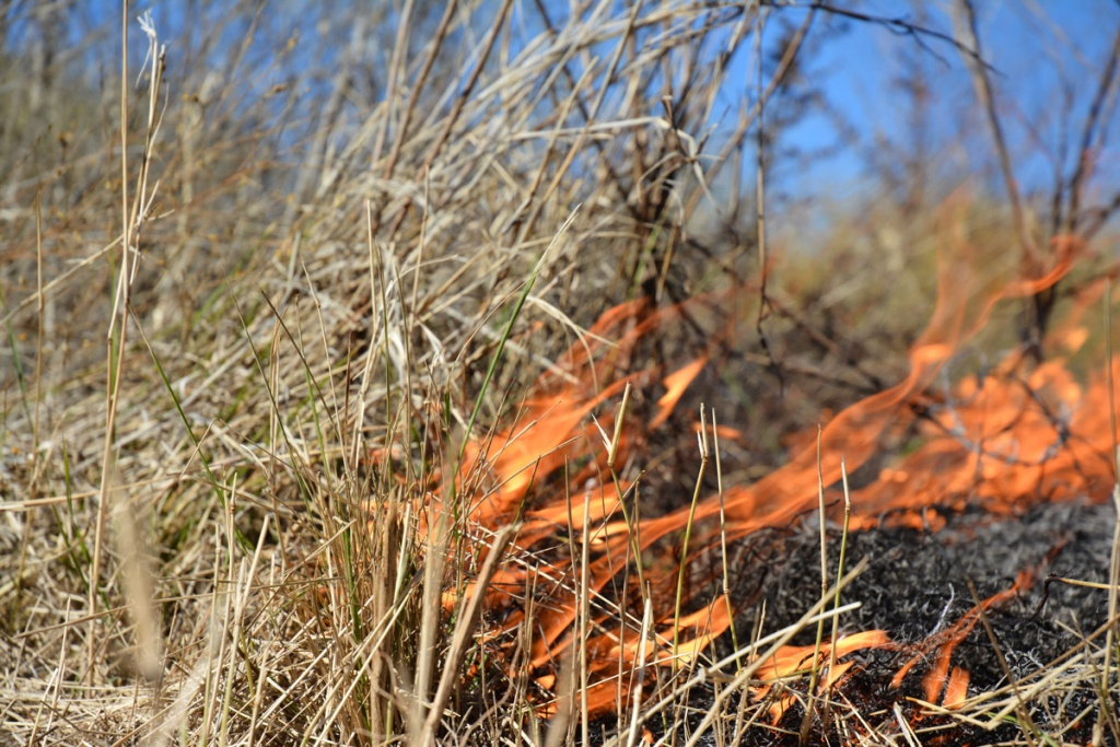 Texas Wildfires Map – Wildfires In Texas – Wildland Fire - Texas Active Fire Map